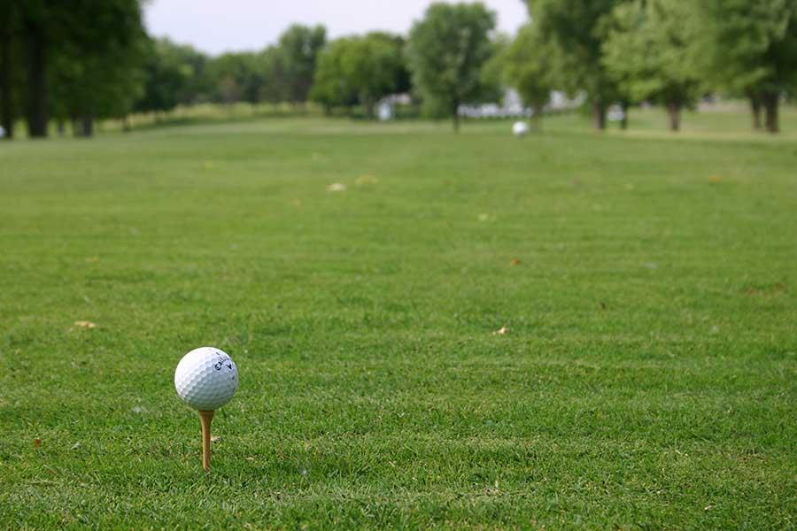 Madelia Golf Course tee