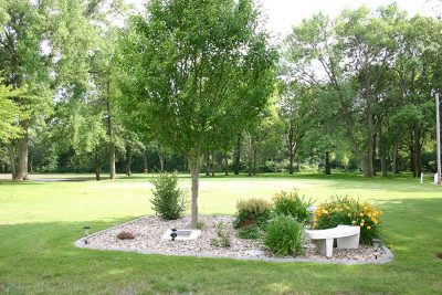 Madelia Golf Course tree and bench